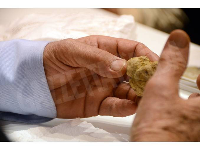 fiera del tartufo (7)
