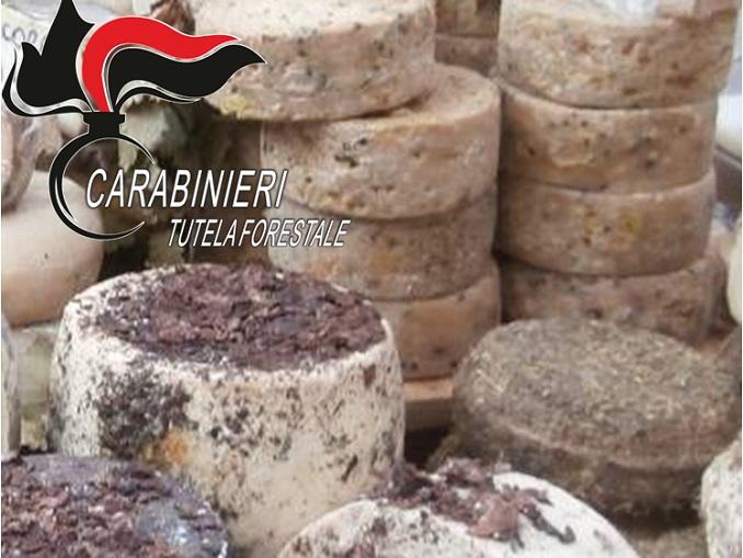 formaggio sequestrato