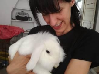 Al Pit stop bunny di Priocca si festeggia un anno di attività