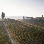 Il miglior vino del Mondo per Wine Enthusiast? Il Nizza docg di Michele Chiarlo