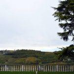 Tenuta Carretta ha aperto una struttura turistica sulle colline del Barbaresco