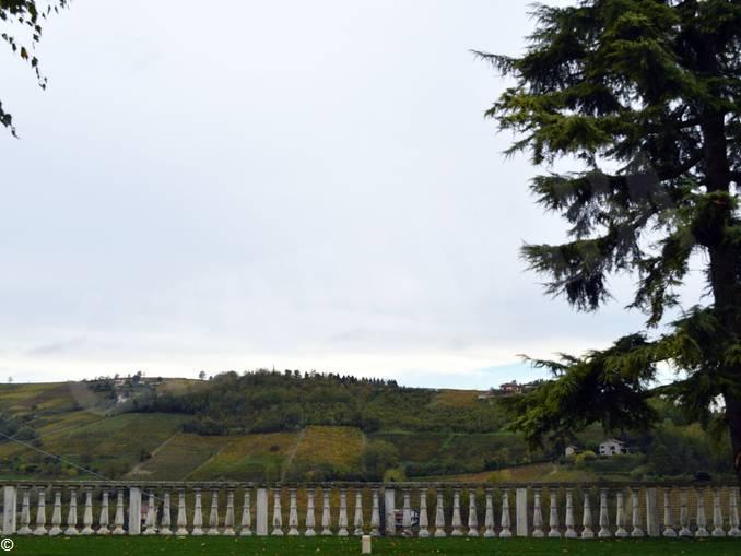 Villa Garassino Treiso 1