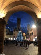 Il Natale si avvicina: in piazza Duomo da Alba ci sono albero e presepe 3