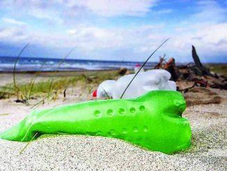 La plastica che mangiamo: con la comunità Laudato si' per cercare un'altra strada 1