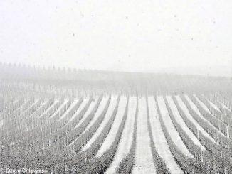 Meteo: dopo la nevicata il tempo torna stabile