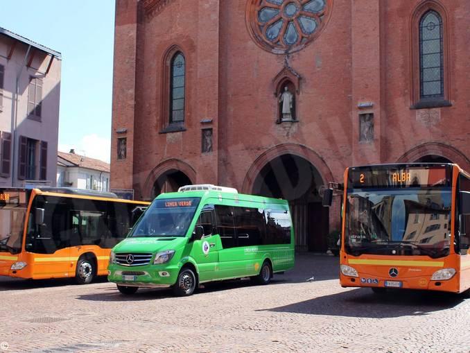 bus urbani alba