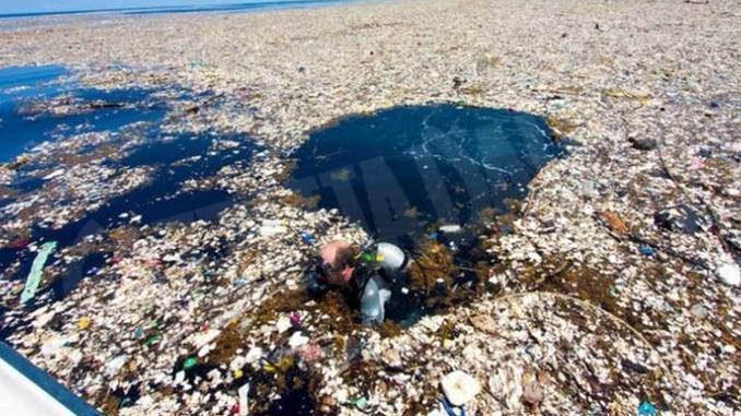 Plastic free challenge vuole dire basta con la plasticausa e getta
