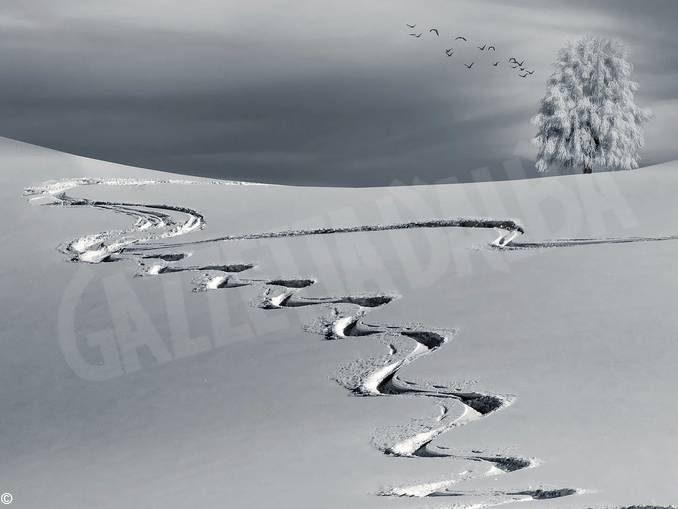 Vacanze di Natale, ottime le prestazioni del turismo nelle località sciistiche piemontesi