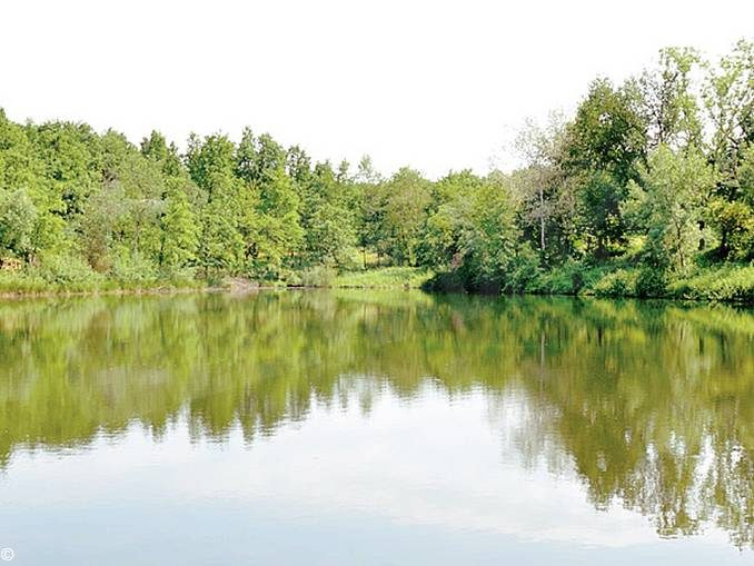 Il parco forestale 2.0 dovrà diventare una vetrina per valorizzare il Roero