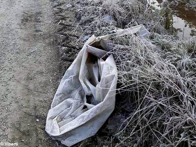 Tanardo da salvare. A piedi lungo il fiume: un cimitero di pattume