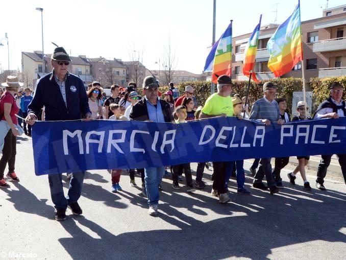 marcia pace vaccheria baraccone 04
