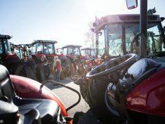 60mila presenze alla Fiera della meccanizzazione agricola di Savigliano 3