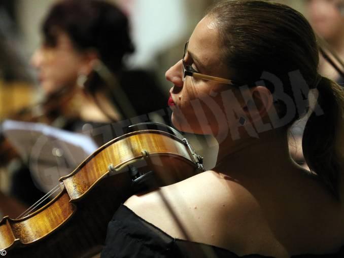 violino_AMF