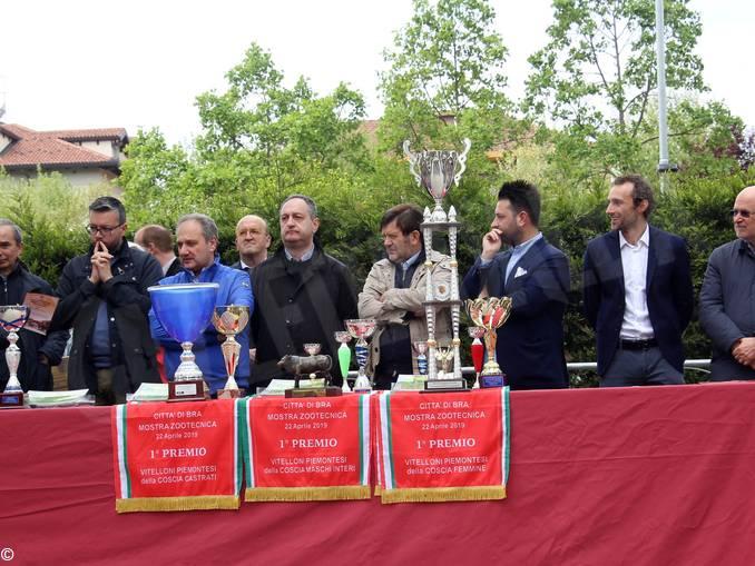 Photo Muraidlo bra fiera di pasquetta (7)