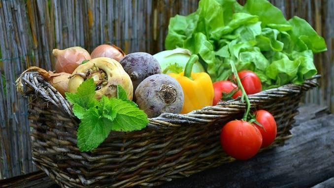Il Mercato della terra propone i suoi prodotti anche nel quartiere Moretta