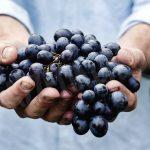Uva: il maltempo tocca anche il mercato
