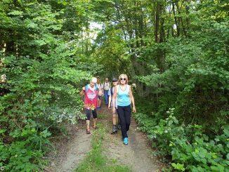 """Domenica 16 il trekking """"Cammina Clavesana"""" proposto dalla cantina sociale"""