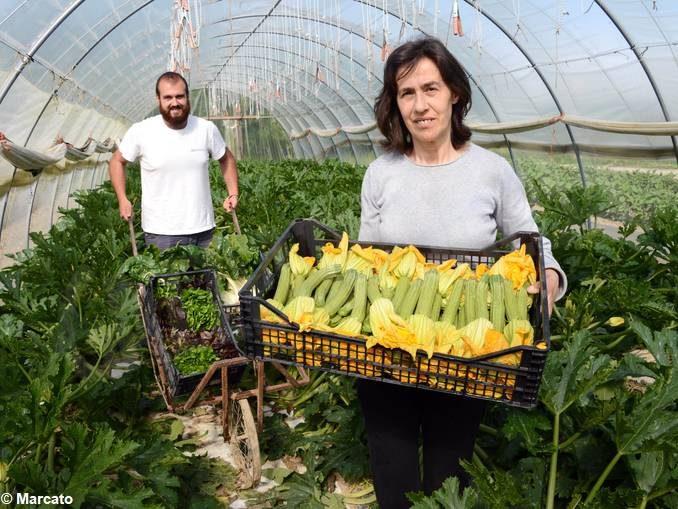 Le donne attive nell'agricoltura, custodi preziose di cibo e natura 2