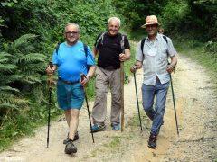 Bra-Castellinaldo lungo i sentieri  di fratel Bordino 6