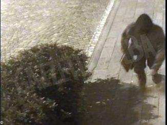 A maggio rapinò una sala slot a Canelli, arrestato grazie alle telecamere