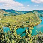 Al castello di Grinzane l'omaggio ai paesaggi del vino