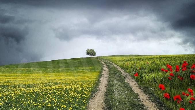 Il trattore si ribalta in un campo a Parolo, vittima un pensionato di origini braidesi
