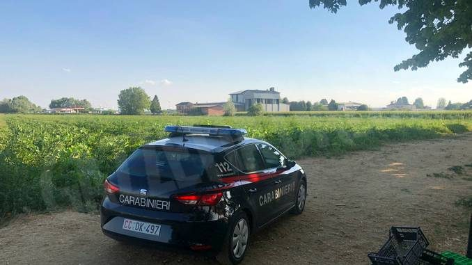 Lavoratori in nero in un'azienda agricola, comminata multa da 50 mila euro