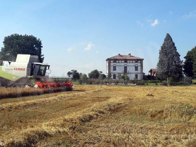 L'Oscar green Coldiretti all'albese Massimo Prandi per il suo birrificio contadino 1