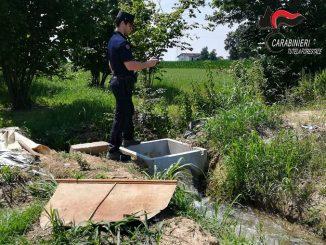 Controlli dei Carabinieri Forestali sulle captazioni idriche: rilevate 14 infrazioni