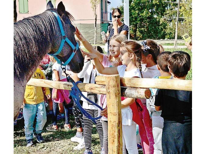 La lezione del Servaj festival: valorizzare grazie alla natura 1