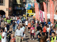 Alba: grande partecipazione a Corri sotto le torri Alba nel cuore 16