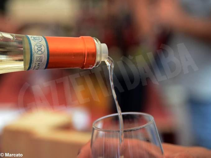 La fotogallery della Festa del vino di Go wine 2