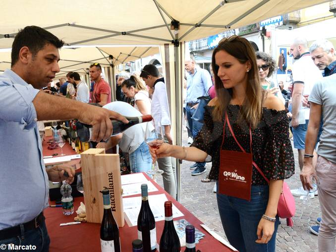 alba festa vino go wine04