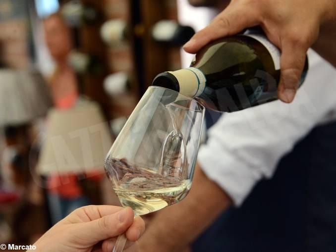 alba festa vino go wine07