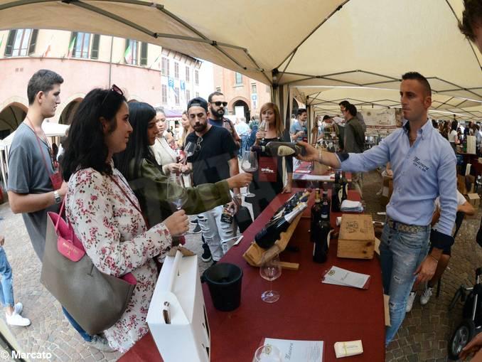 alba festa vino go wine12