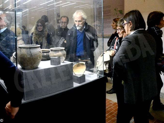 museo alba