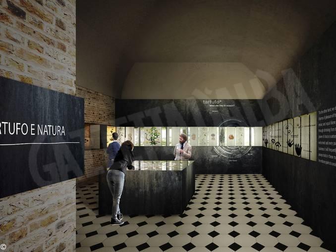 museo tartufo rendering