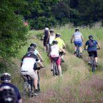 Domenica 29 pedalata enogastronomica sui sentieri attorno a Tigliole