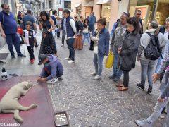 Fotogallery: una domenica di Fiera del tartufo 4