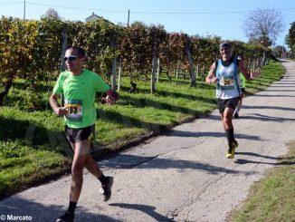 Ecomaratona del Barbaresco