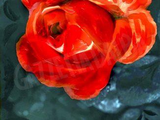 A La Morra la mostra Espressioni duali di Ivana Allasia e Giorgio Gallo 1