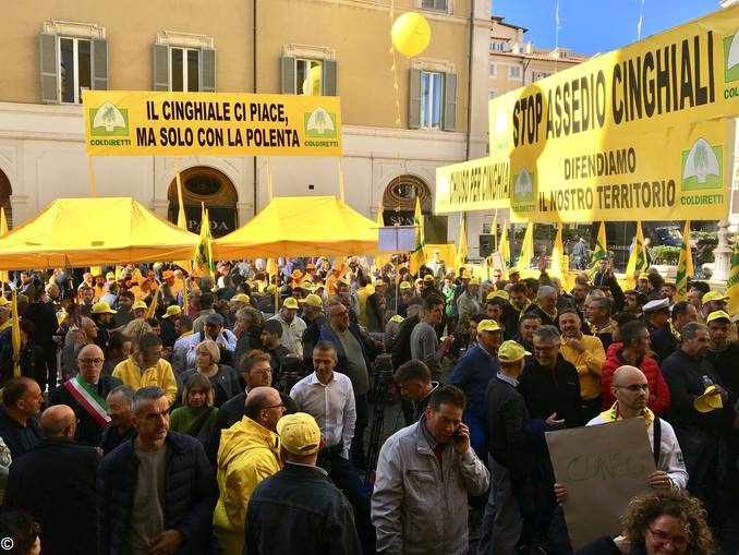 ManifestazioneColdirettiCinghiali3