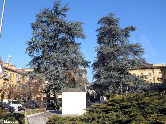 alba piazza savona 2008-1