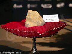 Ventesima Asta mondiale del tartufo, battuti lotti per 420mila euro 8