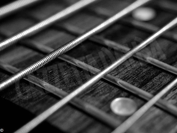 corde chitarra