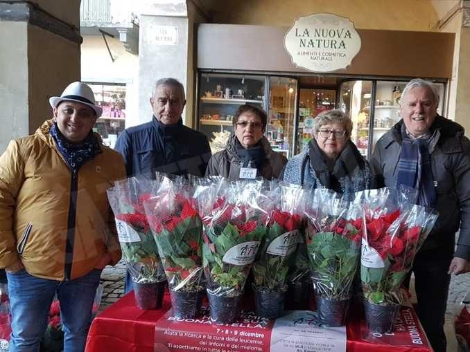 Le stelle di Natale dell'Ail protagoniste in 180 piazze di tutta la provincia di Cuneo