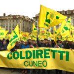 Coldiretti: 4mila agricoltori manifestano a Torino