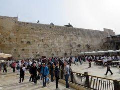 Gli albesi pellegrini di pace nella terra dov'è nato Gesù 12