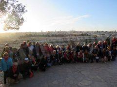 Gli albesi pellegrini di pace nella terra dov'è nato Gesù 25