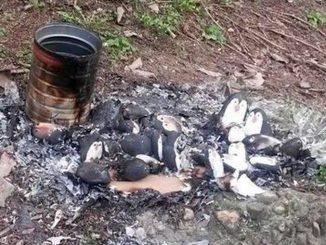 Atti vandalici a Bra, bruciato un presepe alla Rocca e rubata la bandiera al monumento della Resistenza 1